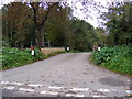 TM3679 : Mill Road, Wissett by Geographer