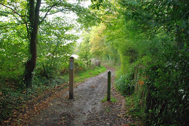 Clifton's Lane changes status