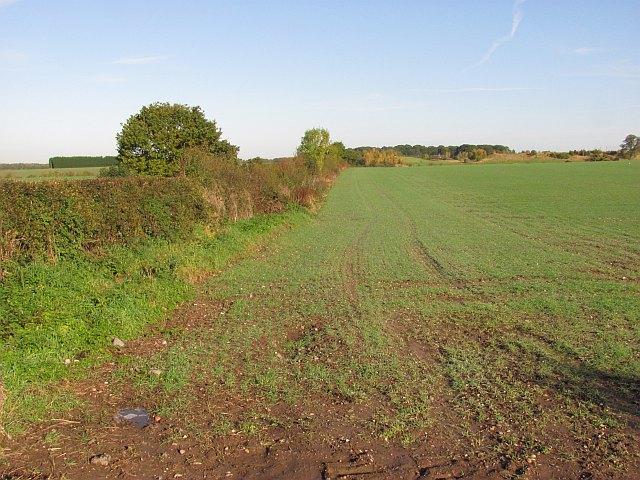 Arable land beside Mansty Lane