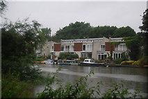 TQ1673 : Riverside properties, Eel Pie Island by N Chadwick