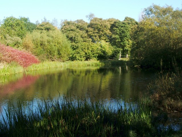 Belmont Pond