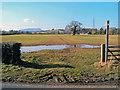 SO3915 : Offa's Dyke Path at Llantilio Crossenny by Trevor Rickard
