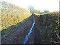 SO3715 : Offa's Dyke Path north of Treadam by Trevor Rickard