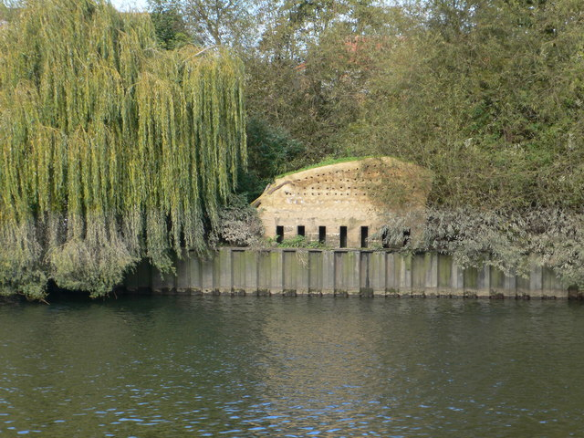 Home for birds and bats on Eel Pie Island