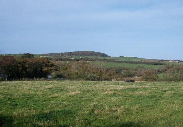 Farmland on the east side of Afon Cyllyfelin