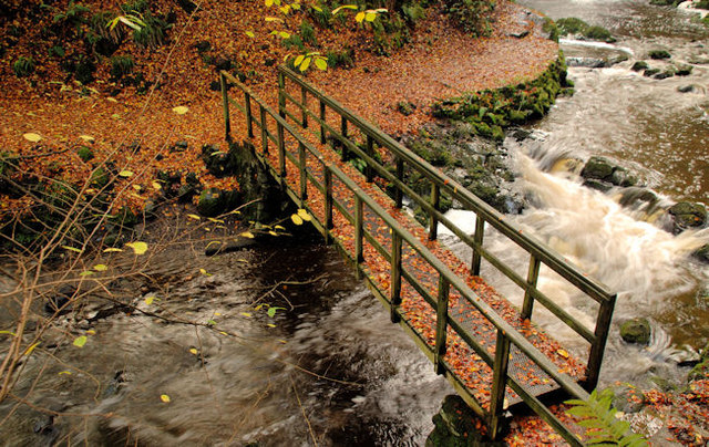 Autumn at Glenoe 2010-4