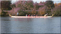 TQ1667 : Dragon Boat seen from Ferry Road by Graham Howard