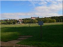 TQ1773 : Petersham Meadows by Eirian Evans