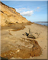 TM5281 : Ancient clay beds exposed at Covehithe Cliffs, Covehithe by Evelyn Simak