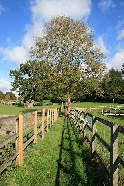 Footpath at Tumber Farm Stables