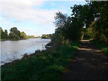 TQ1776 : The Thames Path by Eirian Evans