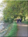 TQ1776 : The Thames Path near Kew Gardens by Eirian Evans