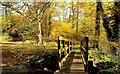 NU1228 : Across the bridge by Alfie Tait