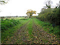 TM5184 : Private farm track on the Benacre Estate by Evelyn Simak