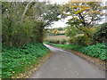 TM5183 : Approach to Hall Farm, Benacre Estate by Evelyn Simak
