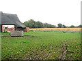 TM5084 : Paddock by Church Farm, Benacre by Evelyn Simak
