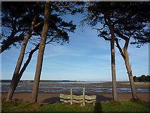NT6378 : Coastal East Lothian : Hedderwick Sands by Richard West