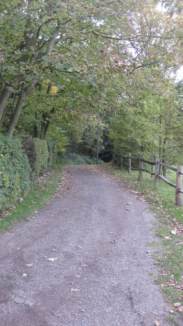 Lane to Telegraph Hill from Claygate