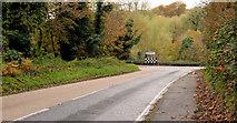 J4846 : The Killyleagh Road, Downpatrick (2) by Albert Bridge