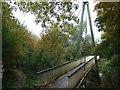 TL1597 : Bluebell Bridge, Thorpe Wood, Peterborough by Richard Humphrey