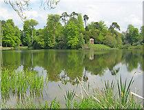 ST9770 : Bowood lake - 4 by Trevor Rickard
