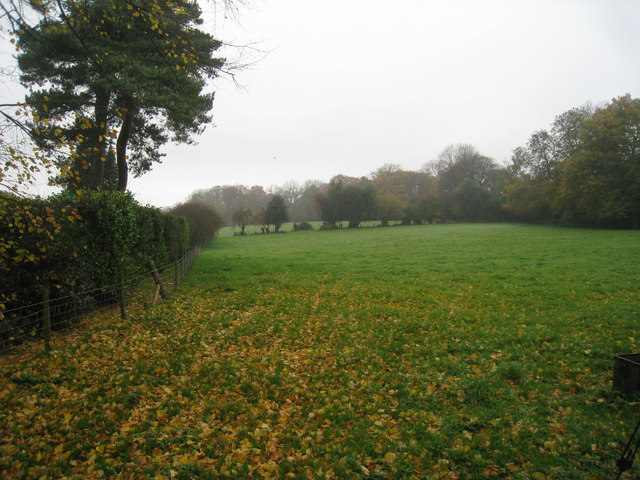 Field off Grays Road