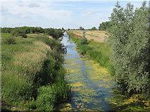 TL4279 : Old Bedford River by Hugh Venables