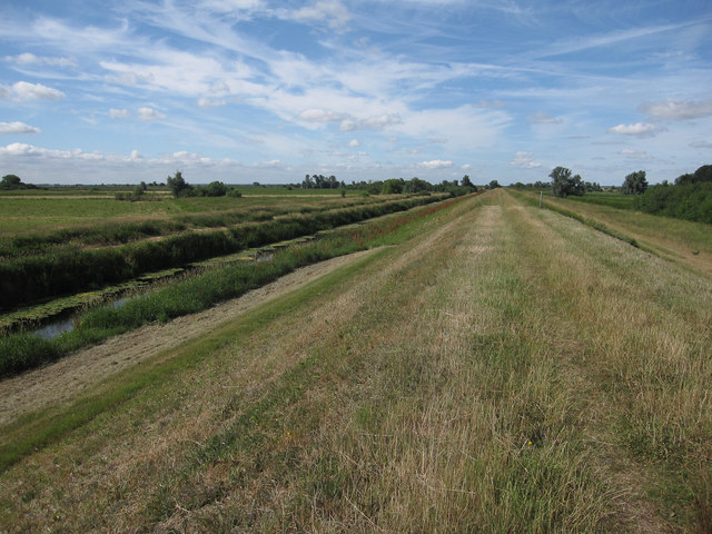 Ouse Washes bank