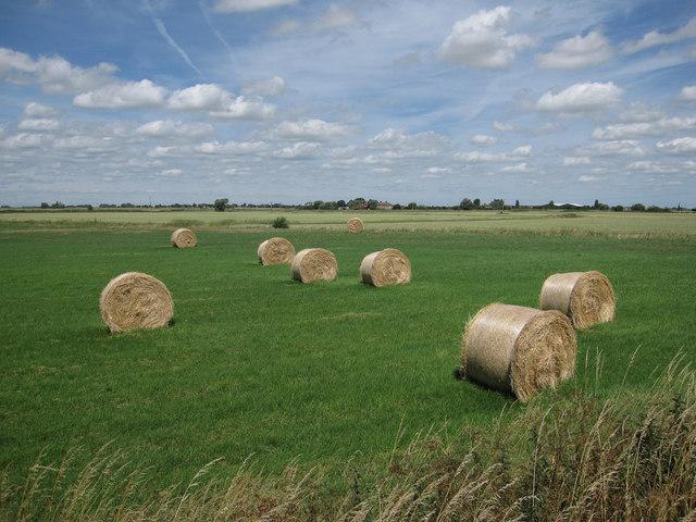 Hay Bales at Willow Farm