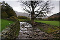 NY2906 : Dungeon Ghyll Beck by Bill Boaden