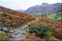 NY3006 : On the Cumbrian Way by Bill Boaden