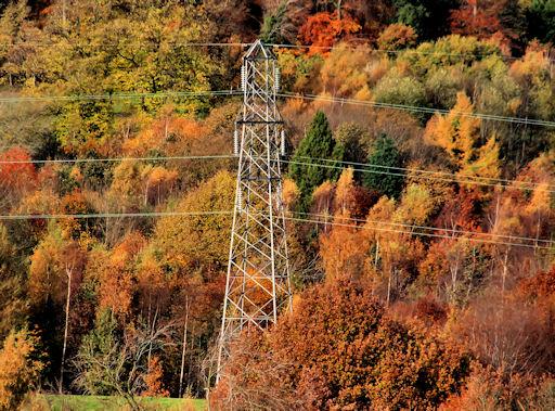 Pylon and power lines near Shaw's Bridge, Belfast