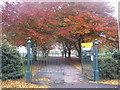 SE8812 : Sheffield Park by Jonathan Thacker