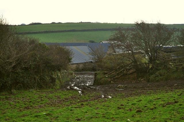 The footpath through Francis Farm