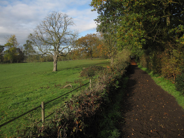 Bridleway to Claygate