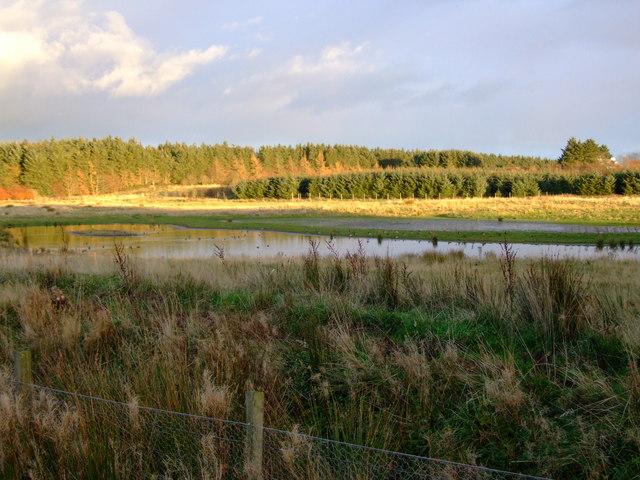 Pond at Artrochie