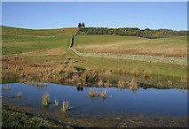 NT4630 : Farmland on Linglie Hill by Walter Baxter