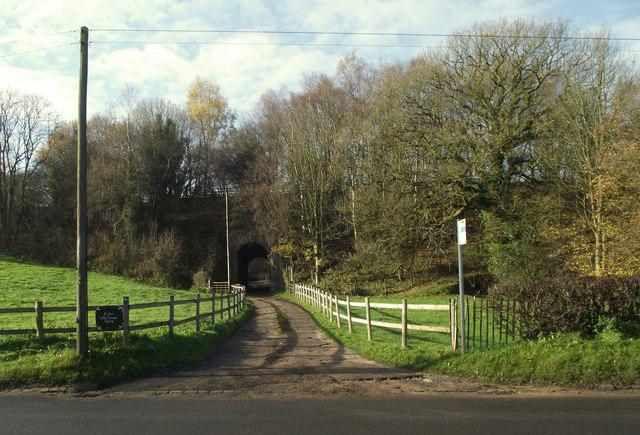 Lane to Higher Whitemoor Farm