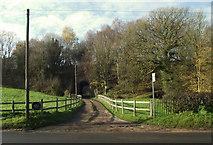 SJ8860 : Lane to Higher Whitemoor Farm by Jonathan Kington