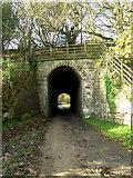 SJ8860 : The old railway bridge by Jonathan Kington