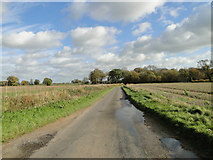 TM1585 : Glebe Road Tivetshall St Mary from Gissing by Adrian S Pye