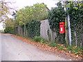 TM2952 : Loudham Lane & Spring Lane Postbox by Adrian Cable