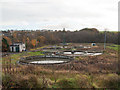 NS9196 : Tillicoultry Sewage Works by Rob Burke