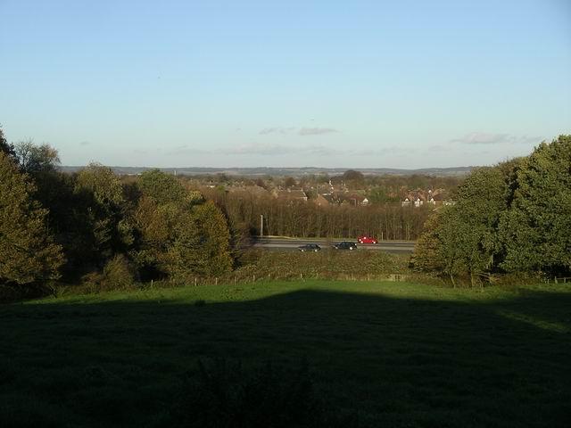Field near Swingate