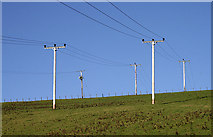 NT4630 : Utility poles and power lines by Walter Baxter