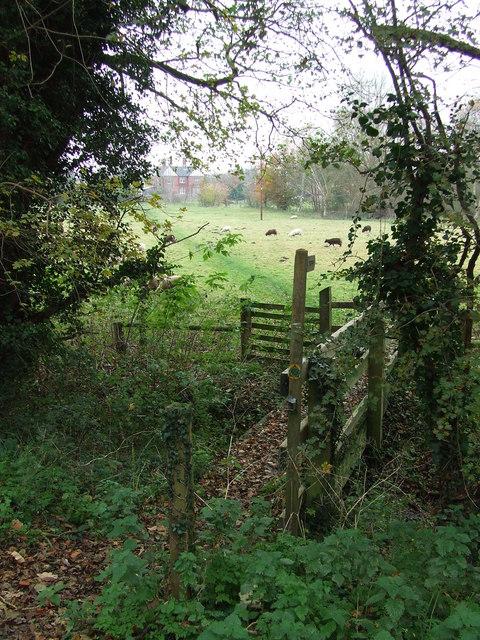 Footpath Bridge And Stile