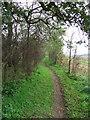 TL9385 : Peddars Way by Keith Evans