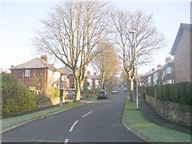 SE2033 : Sunnyridge Avenue, Waterloo Road by Betty Longbottom