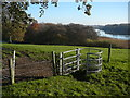 SJ6476 : A kissing gate on the North Cheshire Way by Colin Park