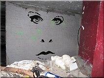 SU6570 : Face on the wall by Bill Nicholls